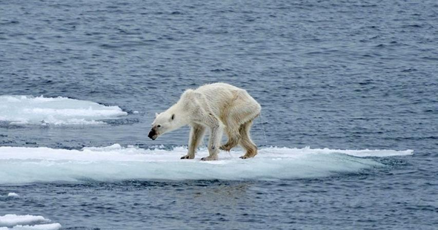 Climate change and the future of our planet.