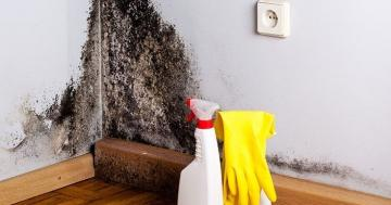 Why Your Home Is More Toxic Than You Think