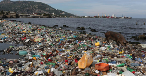Plastic pollution flowing into oceans to triple by 2040: study