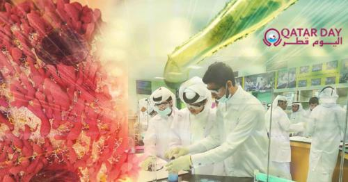 Qatar scientists turn to cancer drugs in hope of finding treatment for COVID-19