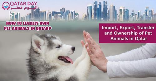 Qatar Law on Pet Ownership — Health and Transport of Animals