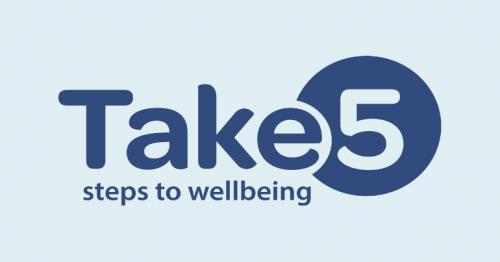 STEPS TO FOLLOW FOR WELL-BEING