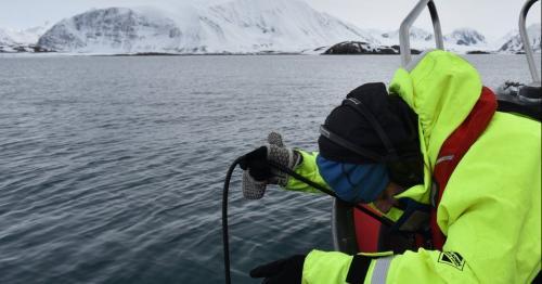 Noise pollution 'drowns out ocean soundscape'