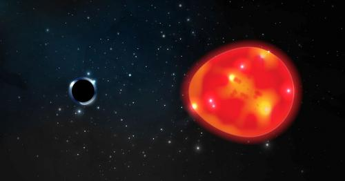 A black hole dubbed 'the Unicorn' may be galaxy's smallest one