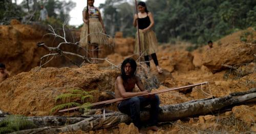 Deforestation in Brazil's Amazon rainforest rises for second straight month