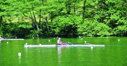 Qatari rower Tala gets through to Tokyo Olympics games