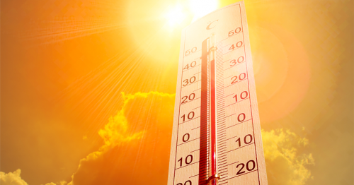 QMD Forecasts Very Hot Temperature for Weekend