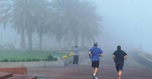 Foggy conditions offshore in next two days: Qatar Met