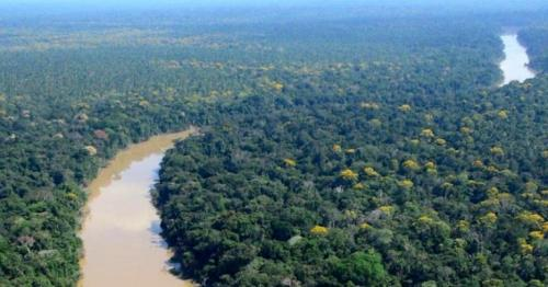 Amazon-dwellers lived sustainably for 5,000 years