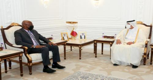 Social Affairs Minister meets Djibouti's National Educational Minister
