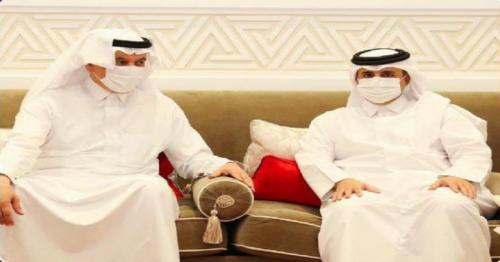 Minister of Environment meets Saudi Minister of Environment