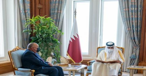 HH the Amir meets Egypt's Foreign Minister