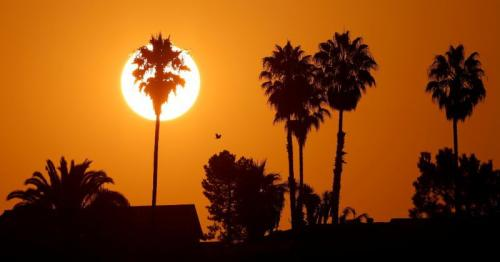 Unrelenting U.S. Southwest heatwave continues as power grids hold up