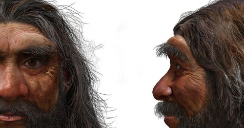 'Dragon Man': Scientists Say New Human Species Is Our Closest Ancestor