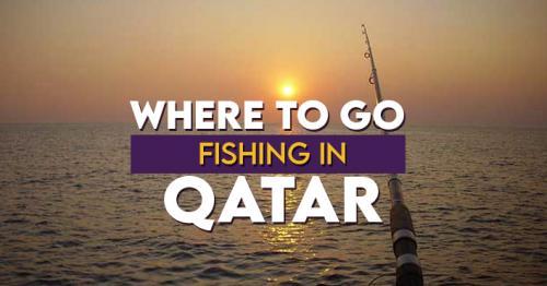 Where To Go Fishing in Qatar?