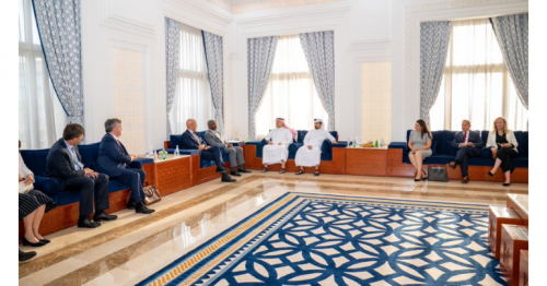 Deputy Prime Minister and Minister of State for Defense Affairs Meets US Congress Delegation