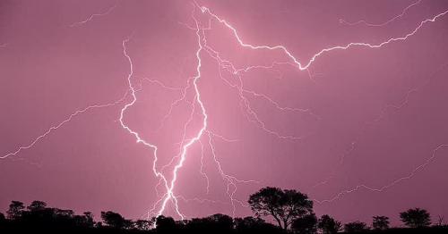 Jaipur: Lightning strike kills 11 taking selfies in India